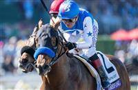 Bob Baffert Trainer Horse Racing Nation