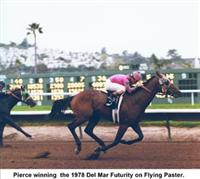 Flying Paster Horse