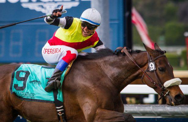 Jockey Tiago Pereira Leaps Into The Top Ten At Santa Anita