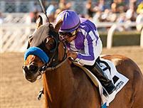 /horse/Indianapolis 6