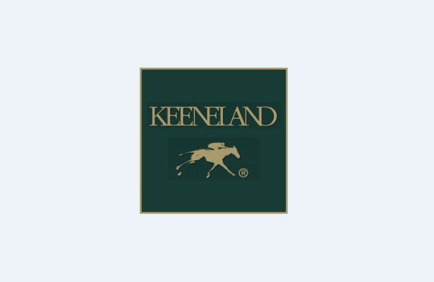 Keeneland Korea Cup Set For Sept 11 At Seoul Racecourse