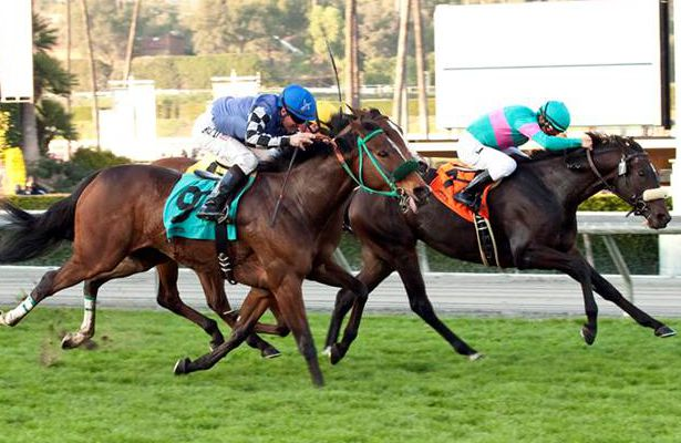 Keri Belle Holds Off Stormy Lucy In Megahertz Horse