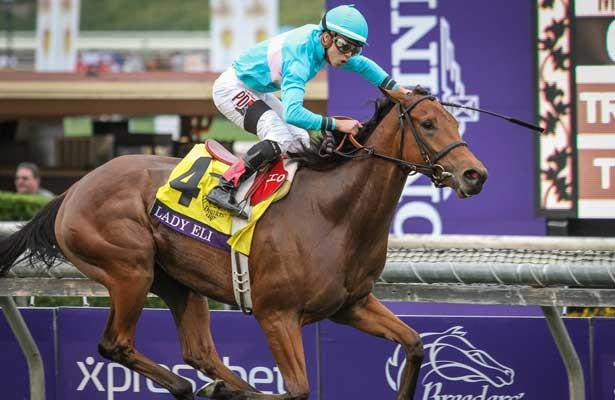 Just How Good Is Lady Eli A New York State Of Racing