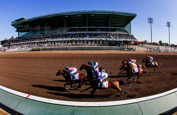 Los Alamitos Opening Day Pick 6 Tickets December 4