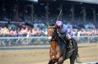 Rebel Horse Racing Nation