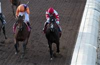 Legacy Of Triple Crown Winners As Stallions Pedigree