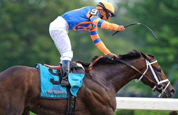 Bernardini Influential Travers Sire Horse Racing Nation