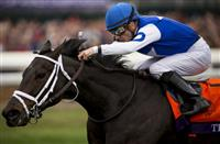 Miss Ella Sails Over Sloppy Track In Caress Horse Racing