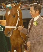 Silky Sullivan Horse